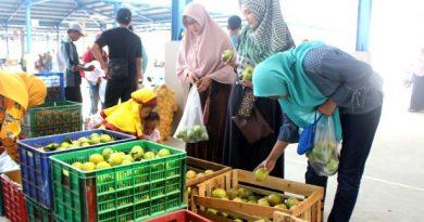 grosir buah sayur