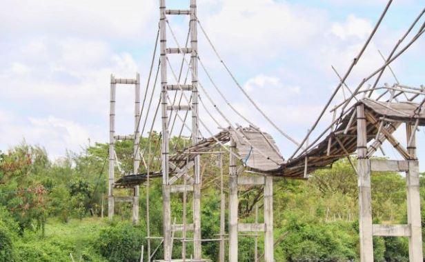 jembatan gantung ekowisata